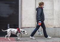 100 euros por no limpiar el orín de mascota en el mobiliario