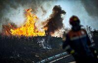 Un aliado inesperado en la lucha contra los incendios