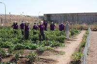 Ocho agricultores ecológicos se reciclan en Torralba