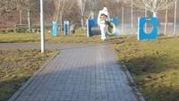 Las zonas acotadas para perros se someterán a tratamiento