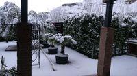Primera nevada de 2021 en La Rioja (III)