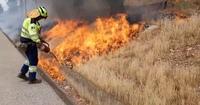 Quemas prescritas para evitar incendios en Puertollano