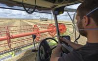 La producción de cereal ronda el millón de toneladas