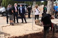 Inician la exhumación de dos fosas comunes en Manzanares