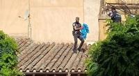 La Policía Local rescata de un tejado a un halcón peregrino
