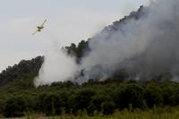 El PP pide ayudas para los afectados por los incendios