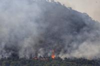 Controlado el incendio que se inició el sábado en Tobarra