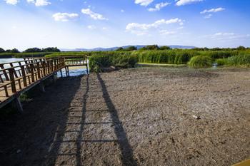 Las Tablas se secan por el desmadre agrario