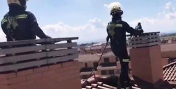 Un guacamayo: el exótico rescate de los bomberos en Illescas