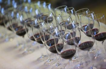 Sotillo celebrará su X Concurso de vinos caseros del Tiétar