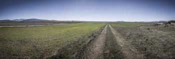 Planas avanza la consulta pública de la norma de granjas
