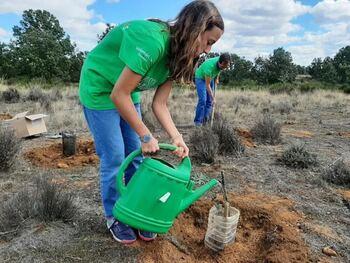 Iberdrola aúna a 5.000 personas en la Semana del Voluntario