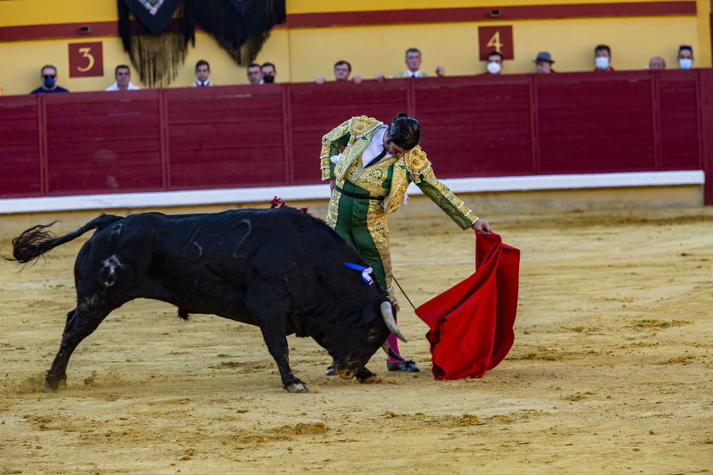 Morante de la Puebla, Perera y Luque en Almodóvar del Campo