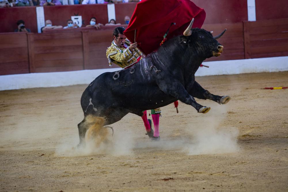 Roca Rey, Emilio de Justo y Antonio Ferreras en la corrida de toros en Alcazar